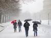 März: Walter Schneider - Schneetreiben