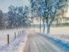 Januar: Guenther Keil - Winterlicher Weg ins Moos